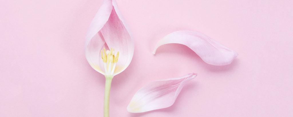 prendre soin de sa flore vaginale
