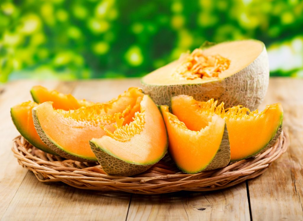 melon Curcubitacée